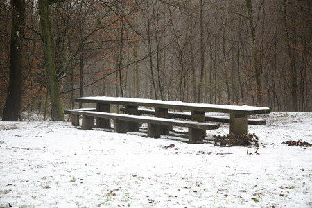 A bench in the park covered with a layer of snow