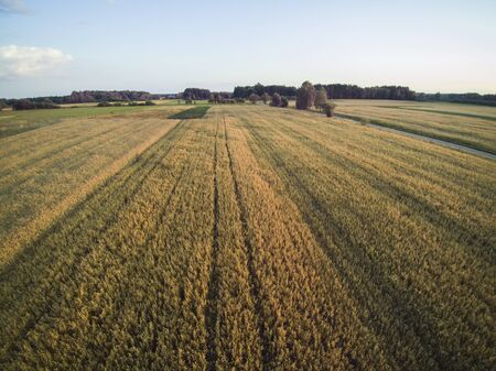 arable fields seen from above, agriculture Stockfoto