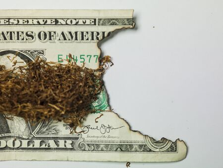 snuff on one dollar bill, burnt money Stock Photo
