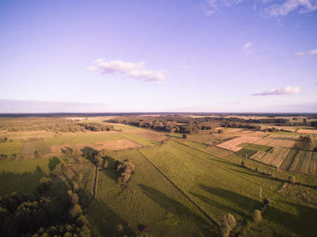 meadow in Poland, high grass, view from above Reklamní fotografie