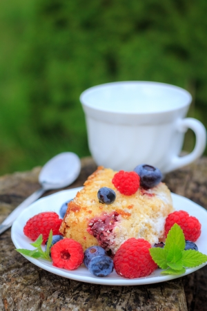Raspberry yoghurt cake photo