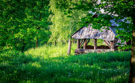 hause: Cabin in the woods Stock Photo
