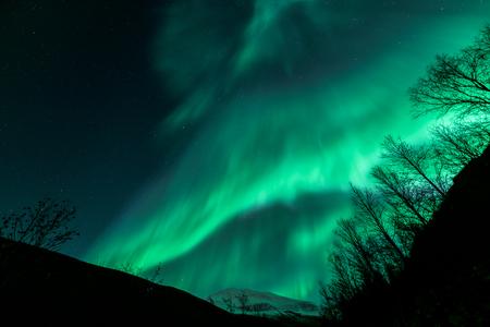 北ノルウェー トロムソ市 Tromsdalstinden 山上で素晴らしいオーロラが見られます