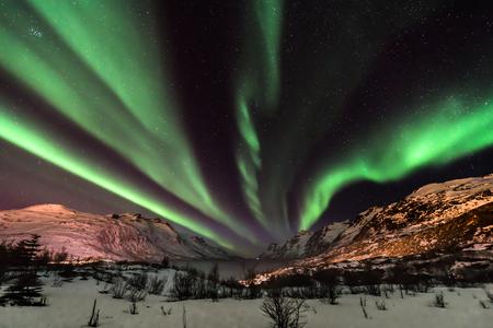 Aurora Borealis (northern lights) in North Norway, Tromso, Kvaloya, Ersfjordbotn