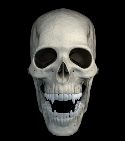Halloween scarry vampire skull isolated on a black background - front view. 3d render.