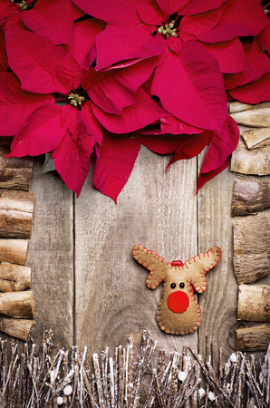 rudolph: Frame arranged from poinsettia flowers, sticks, twigs, driftwood, coconut shell as a background. Handmade from felt Rudolph reindeer. Craft. Stock Photo