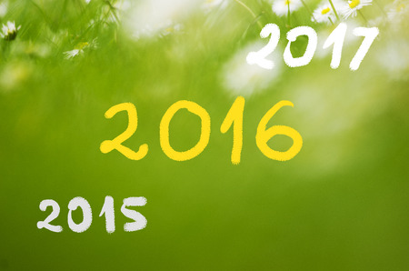 green dates: Dates 2015 going to 2016, 2017 handwritten on real natural green background.