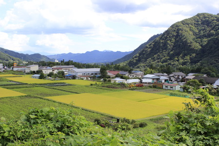 small country town: Small town with wheat crops and mountains on background Stock Photo