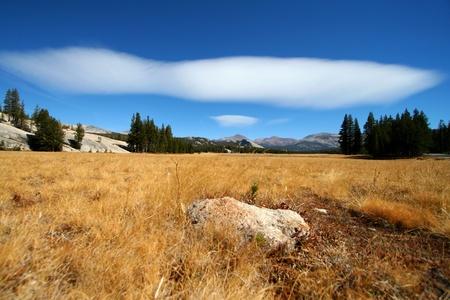 nationalpark: at the yosemite nationalpark