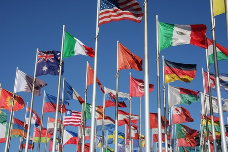 commonwealth: flags of the world