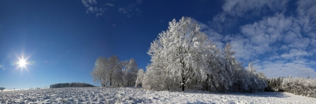아름다운 겨울 풍경 스톡 콘텐츠