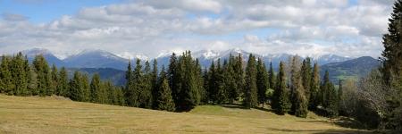 Austrian Alps panorama photo