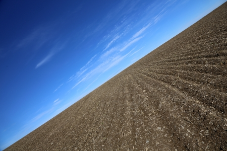 arable and a blue sky  photo