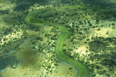 river bed: a lush green river bed seen from above Stock Photo