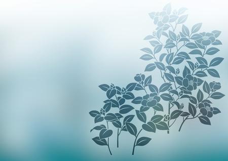 camellia: graphic patterns