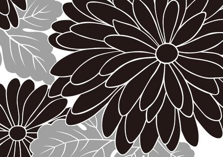 crisantemos: patrones gr�ficos