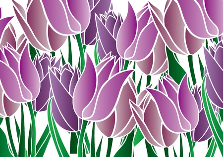 tsu: graphic patterns