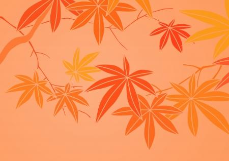 graphic patterns Stock Photo - 13854689