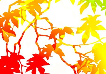 graphic patterns Stock Photo - 14343756