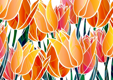 beautiful red tulips close up: graphic patterns