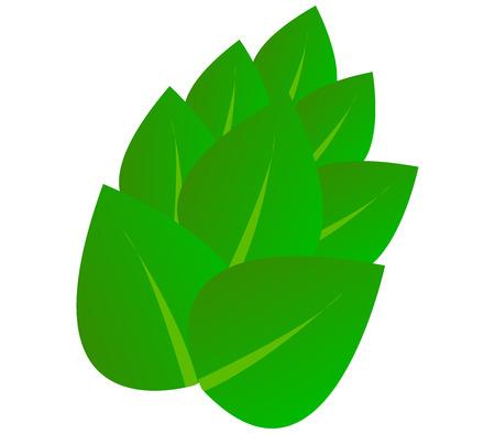 echo: leaves Stock Photo