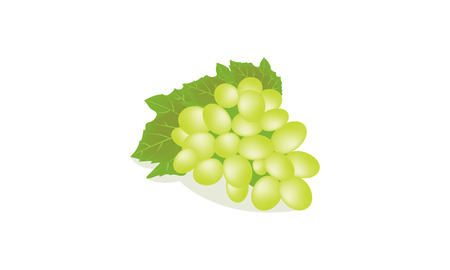 blue berry: grapes on white background
