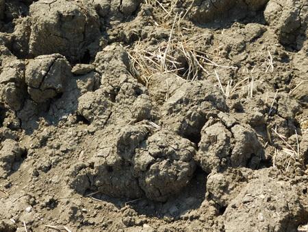 clod: outdoor terrain Stock Photo