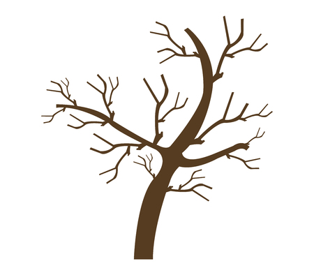 shown: dry tree shown on a white background