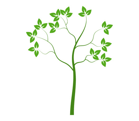 shown: tree shown on a white background
