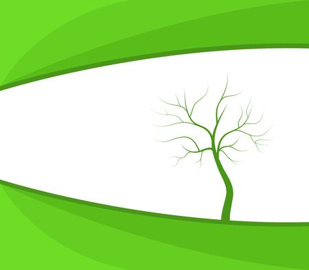dry: dry tree on white background Stock Photo