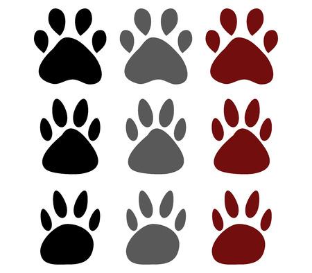 dog paws: Dog paws