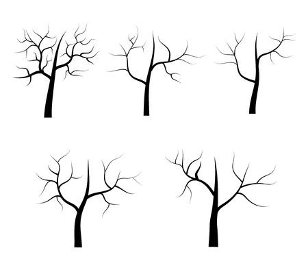 dry: dry tree illustration