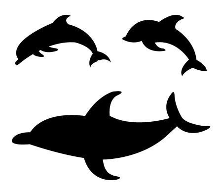 natures: dolphins illustration on white background