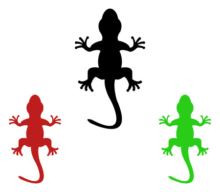 natures: lizards illustration on a white background