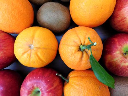 fruit: fruit