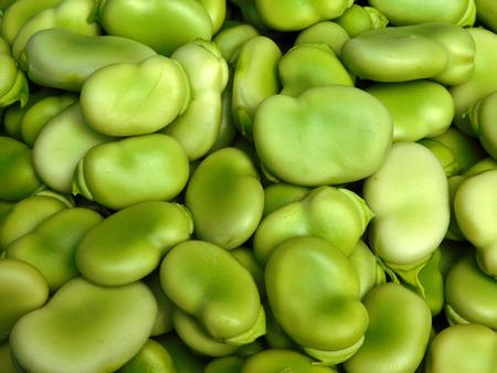Fava beans Фото со стока - 57673538
