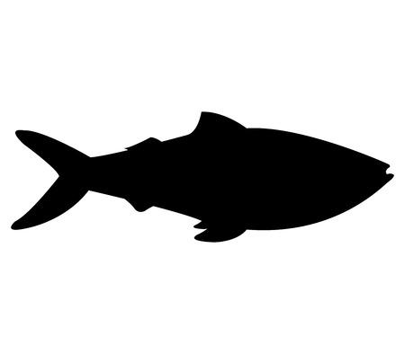 fish: fish