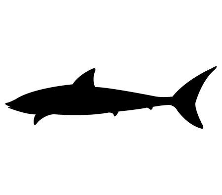 natures: shark