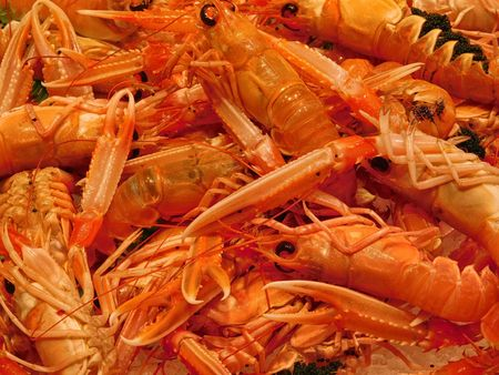 scampi: texture of scampi