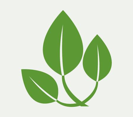 Leaves icon Illustration
