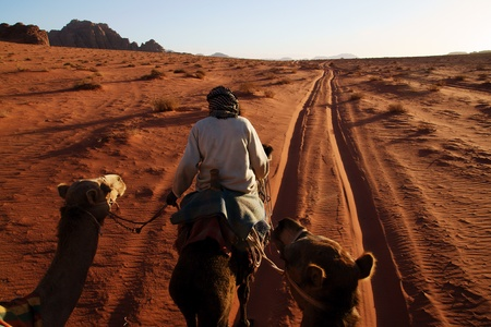 Ride a camel with bedouin guide in the wadi Rum desert, Jordan photo