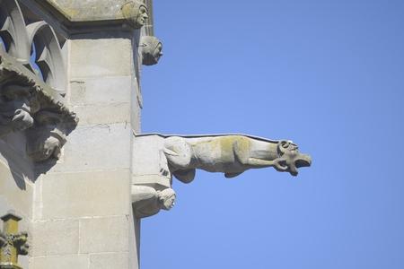gargoyles: Gargoyle or gargoyles - Carcassonne, France