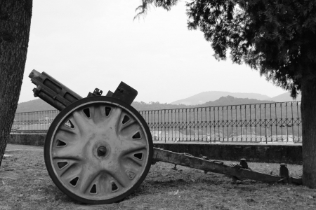historic cannon placed in memory of the war in black and white photo