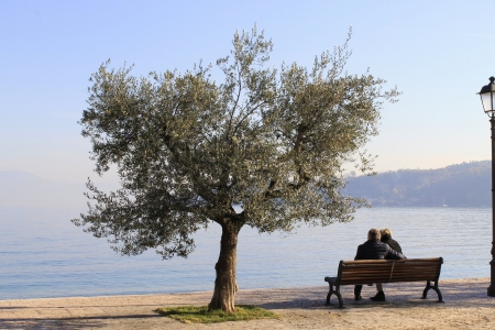 two lovers on a bench by lake in winter photo