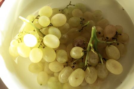 wei�e trauben: Trauben von wei�en Trauben in Wasser