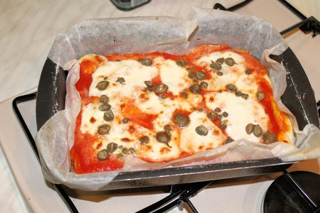 Pizza with tomato and mozzarella cheese cooked in house photo