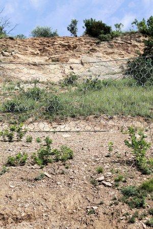 rockslide: rocky area with danger of falling rocks