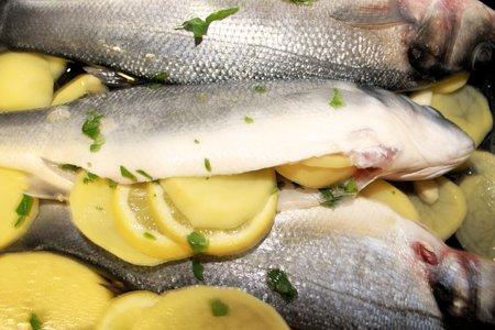 seabass: Lubina pescado crudo con perejil lleno de patatas y lim�n listos para el horno