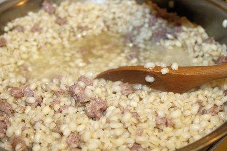sausage pot: rice and sausage