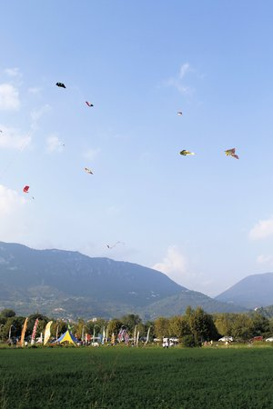 holiday gathering: colorful kites flying in the blue sky
